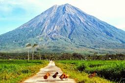 Wisata Gunung Di Jawa Timur