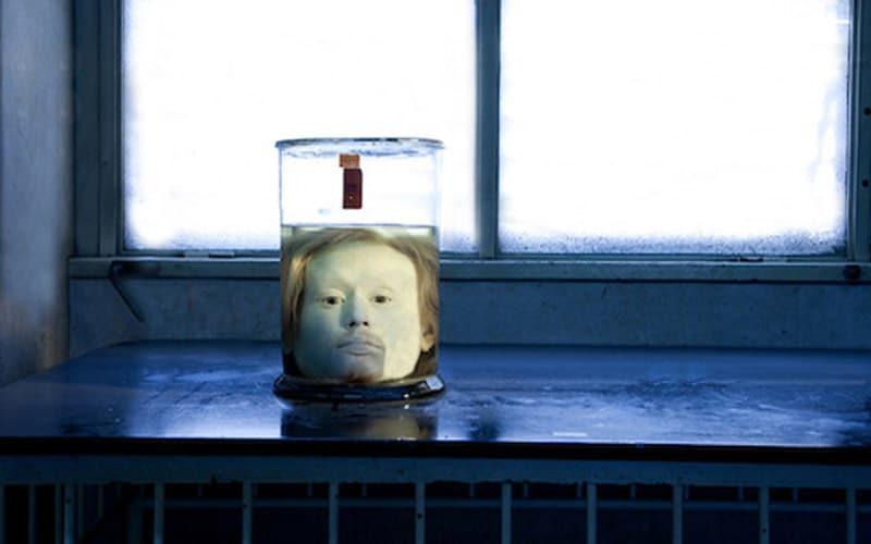 693081181cb45 Foi buscando entender a cabeça de criminosos, que médicos conservaram a  cabeça de Diogo. No entanto, não há provas de que pesquisas frenológicas  foram ...