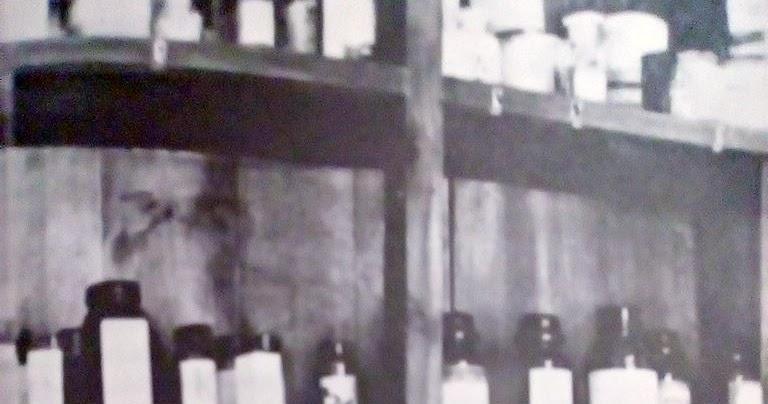 Apa Itu Penicillin Dan Kenapa Bakteri Kebal Terhadap