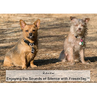 Review: Enjoying the Sounds of Silence with FreezeTag™