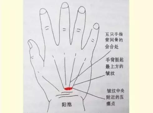 腎氣不足婦科必來,這3種行為,一個比一個傷腎!(白髮、脫髮)