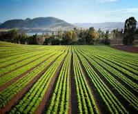 best farming organizations to participate in