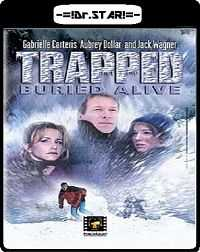 Trapped Buried Alive 2002 Hindi - English 300mb Download Dual Audio DVDRip