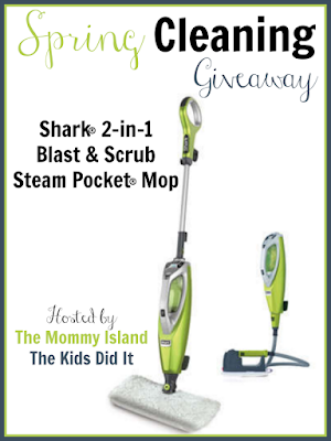 Contest, Home, Shark Steam Pocket Mop
