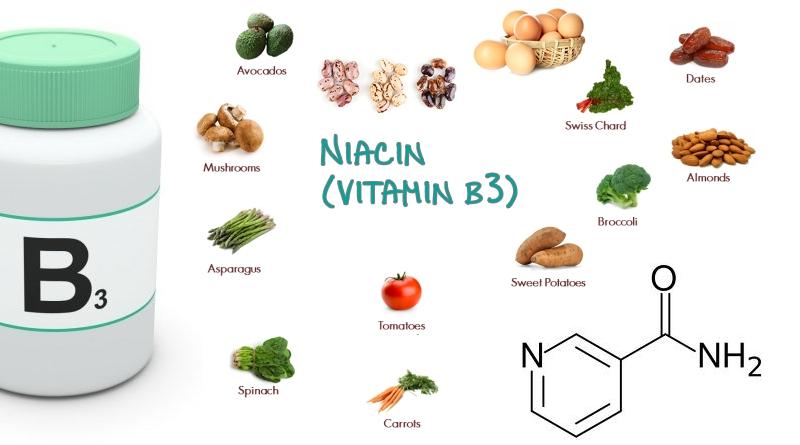 Macam Jenis Vitamin B3 Niacin Beserta Fungsi Dan Manfaatnya