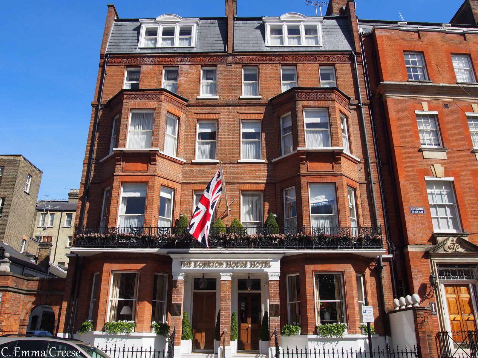 Egerton Hotel: A pawfectly luxurious doggie afternoon tea.