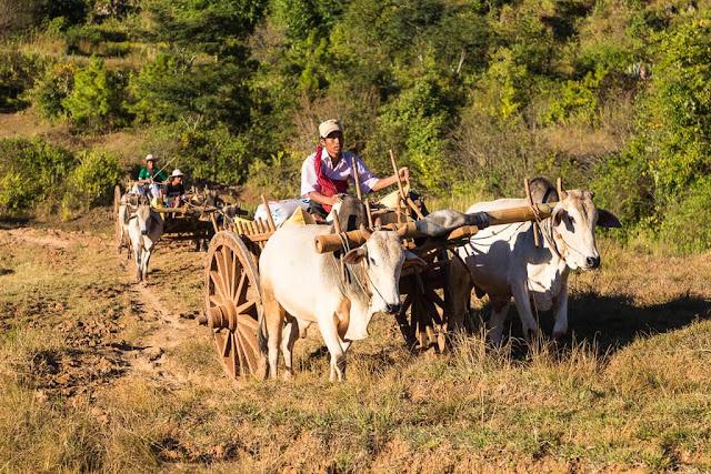 Carros en la zona rural, trekking Kalaw-Inle, Myanmar