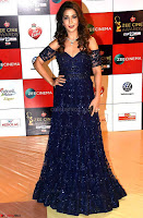 Krishika Lulla Walk the Red Carpet of Zee Awards 2017i ~  Exclusive Galleries 016.jpg