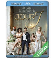 LA WEDDING PLANNER (2017) FULL 1080P HD MKV ESPAÑOL LATINO