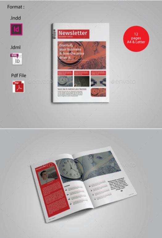 28. Multipurpose Newsletter Template Vol.II