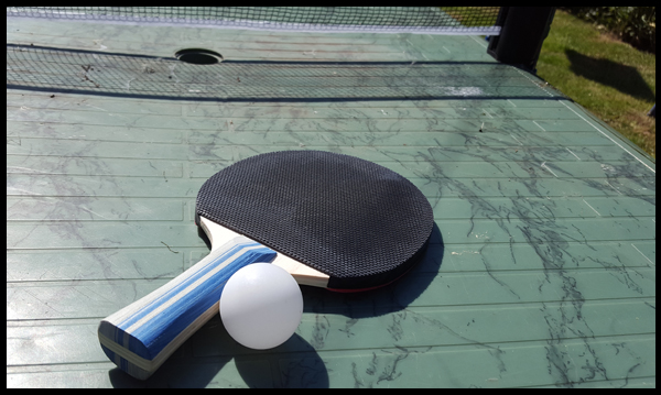 Quick and easy way to get the kids in the garden - take the table tennis game outside