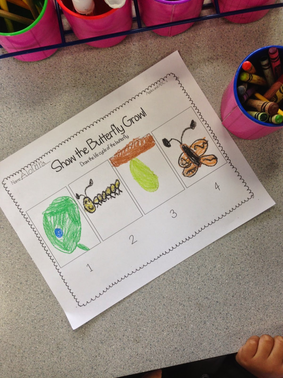 Teacher Observation Tips And A Lesson Plan Idea