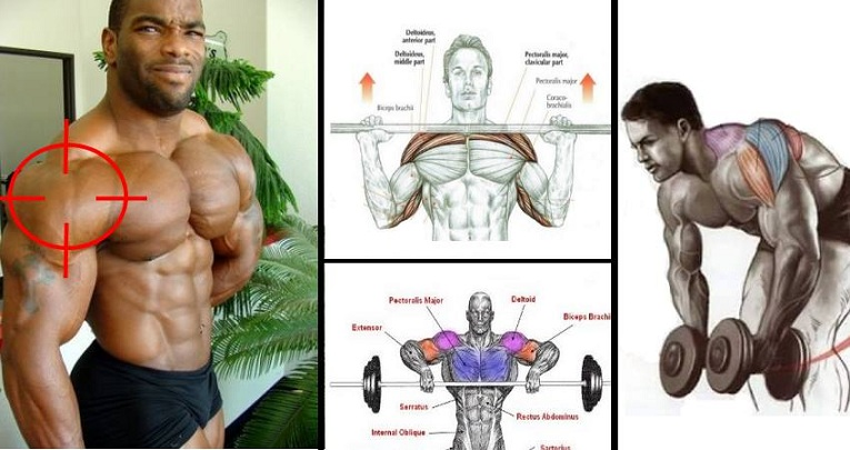 how to quickly build muscle mass