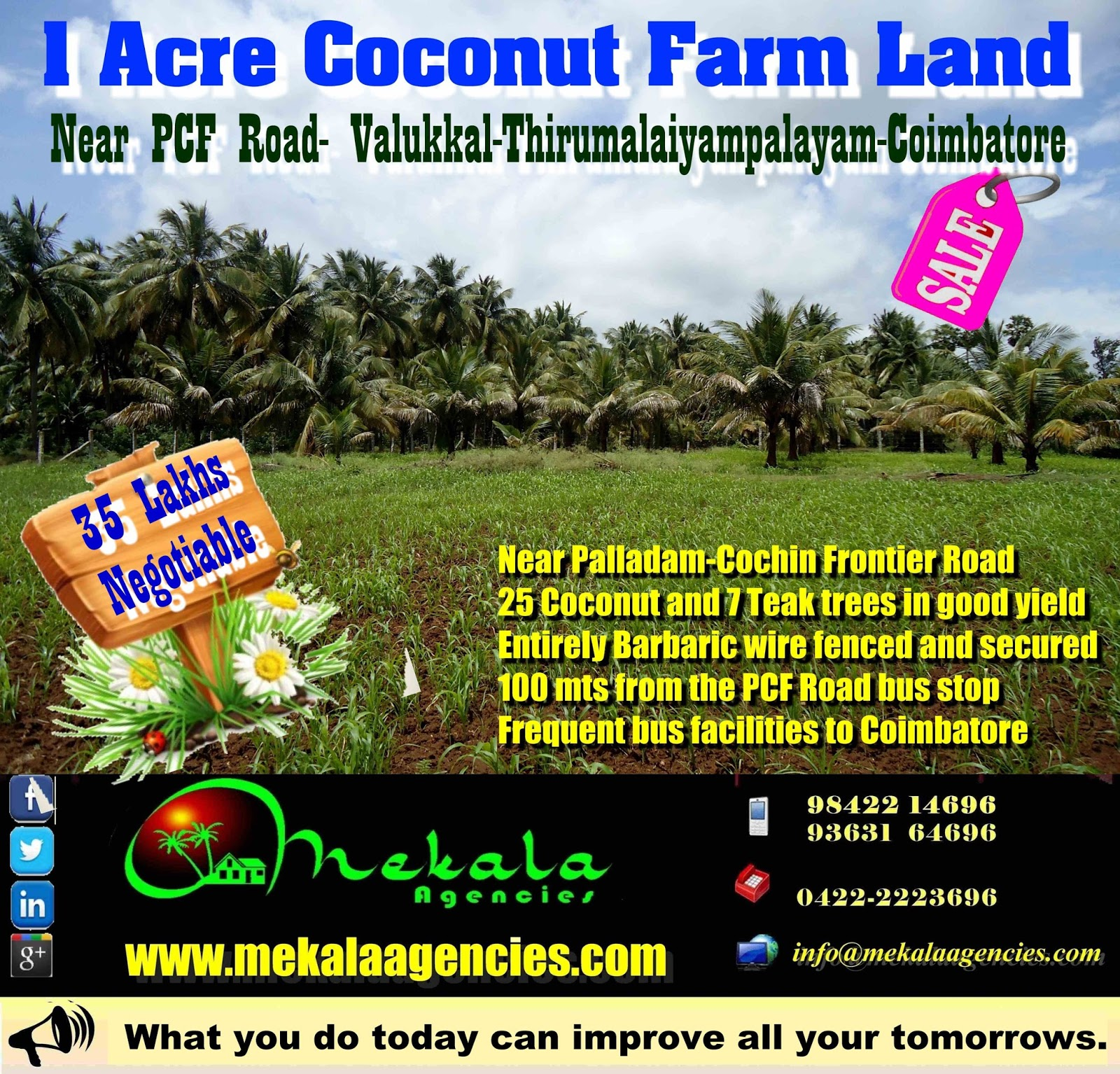 1 Acre Coconut farm land Sale near PCF Road-Valukkal