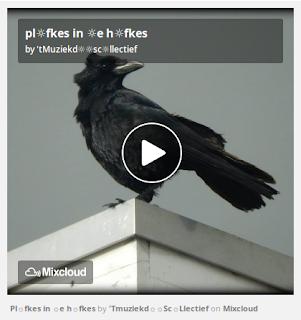 https://www.mixcloud.com/straatsalaat/plfkes-in-e-hfkes/
