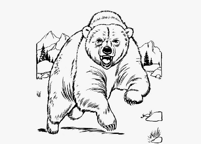 Grizzly bear coloring page Free