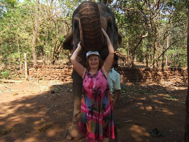 я и слониха