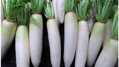 Benefits of Radish,Radish health benefits,radish pictures,radish images,