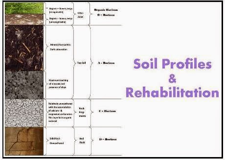 Roots 39 n 39 shoots composting kitchen waste npk fertilisers for Soil meaning in english