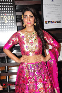 Shriya Saran Pictures at The Wedding Vows Fashion Show ~ Celebs Next