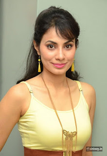 Actress-Manisha-Kelkar-at-Friend-Request-Movie-Pressmeet