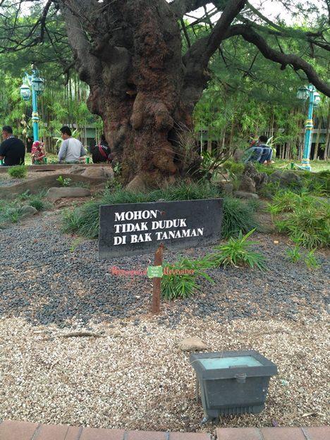 dilarang duduk di taman
