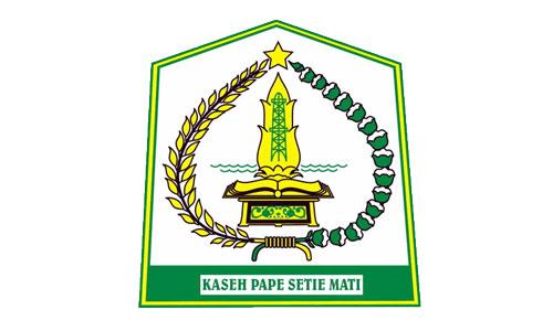 CPNS Kabupaten Aceh Tamiang Tahun Anggaran 2018