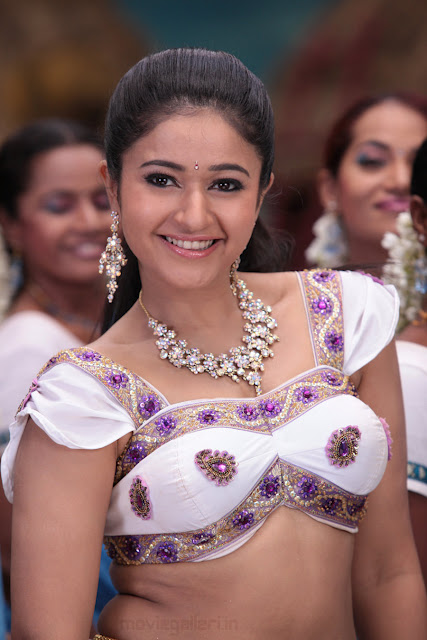 Poonam Bajwa Hot Photos