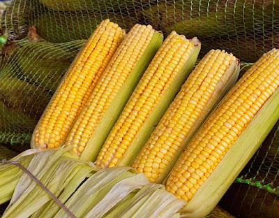 Resultado de imagem para SP: Ceagesp tem milho verde a R$ 0,65 o quilo
