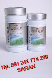 Obat Herbal Untuk Penyakit Maag