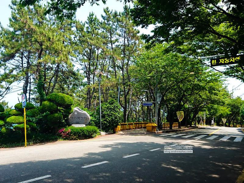 IgidaeGongwon-12.jpg