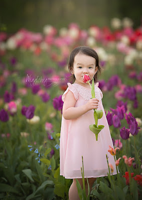 Portrait of a 2 year old little girl in pink dress in tulips at Flowers on Fargo in Geneva, IL