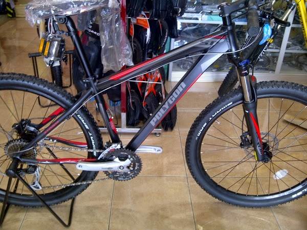 Sepeda Polygon Xtrada 5.0 27.5