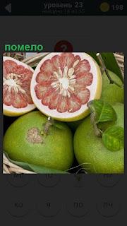 В корзине лежат несколько помело, двое плодов порезаны пополам