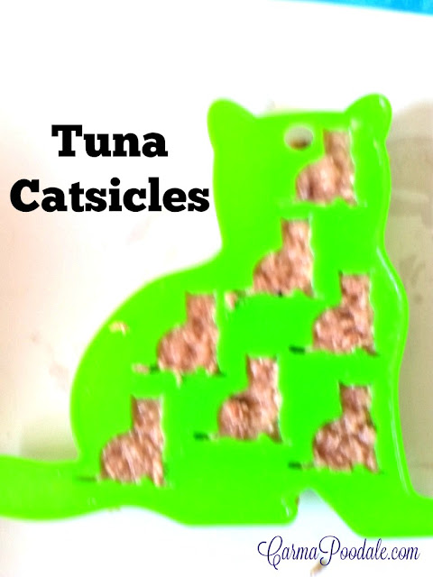 Tuna in the cat shaped ice cube tray