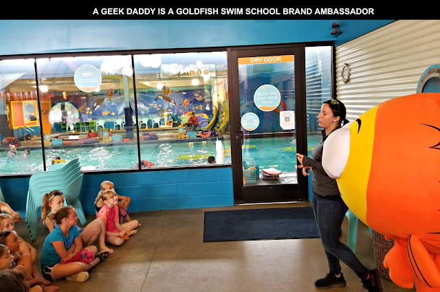 gold fish swim school