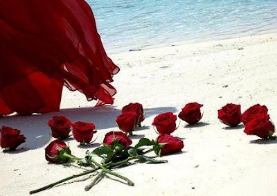 Ν. Λυγερός: Γλυκά ροδοπέταλα - Ρόδο μου αμάρανθο