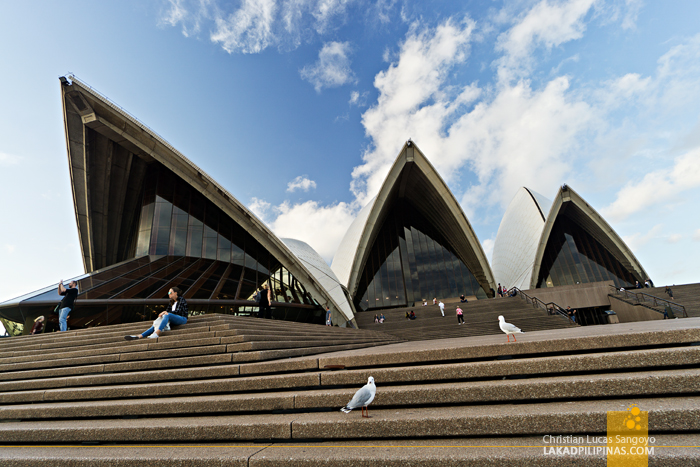 Australia 10 Day Itinerary Travel Guide Sydney
