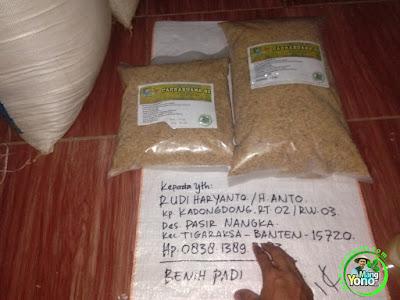 RUDI HARYANTO ( H. ANTO) Tangerang, Banten   Pembeli Benih Padi  CAKRABUANA 02 sebanyak 7,5 Kg.  (Sebelum Packing)