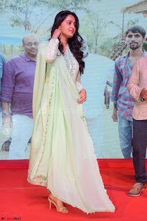 Anushka Stills At Show Time Movie Audio Launch 12.jpg