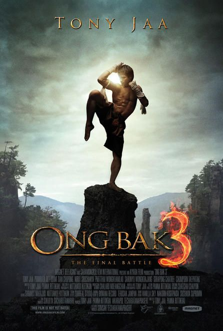 Xem Phim Truy Tìm Tượng Phật 3 2010