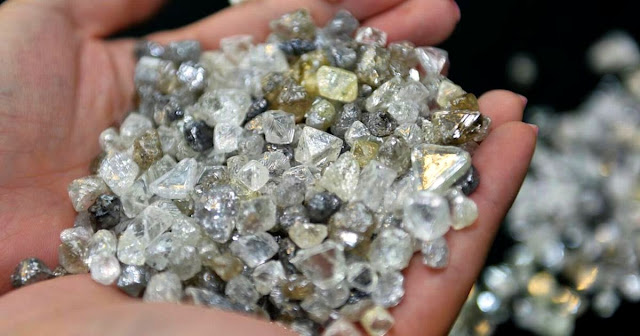 Geologist Discovers Plant That Only Grows Near Diamonds