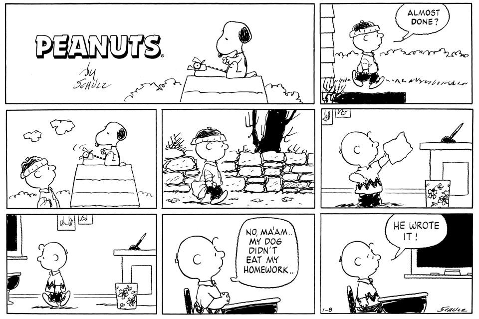 Teacher Lu Online: About Homework...