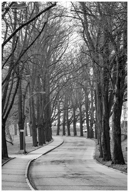Zeitz, Rasberger Straße