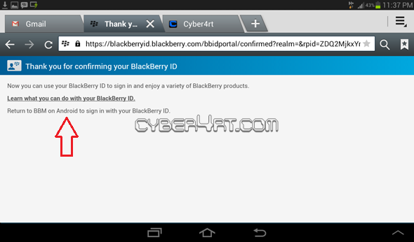 Download BBM For Android September 2013