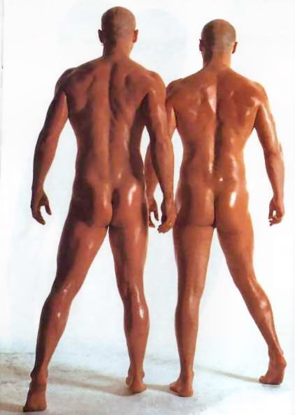 Ideal Nude Right Said Fred Png