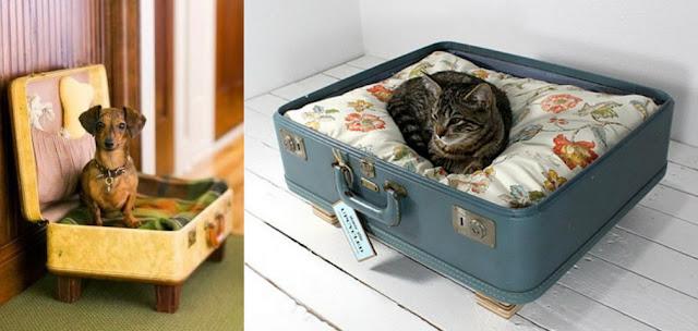 Camas para caes e gatos