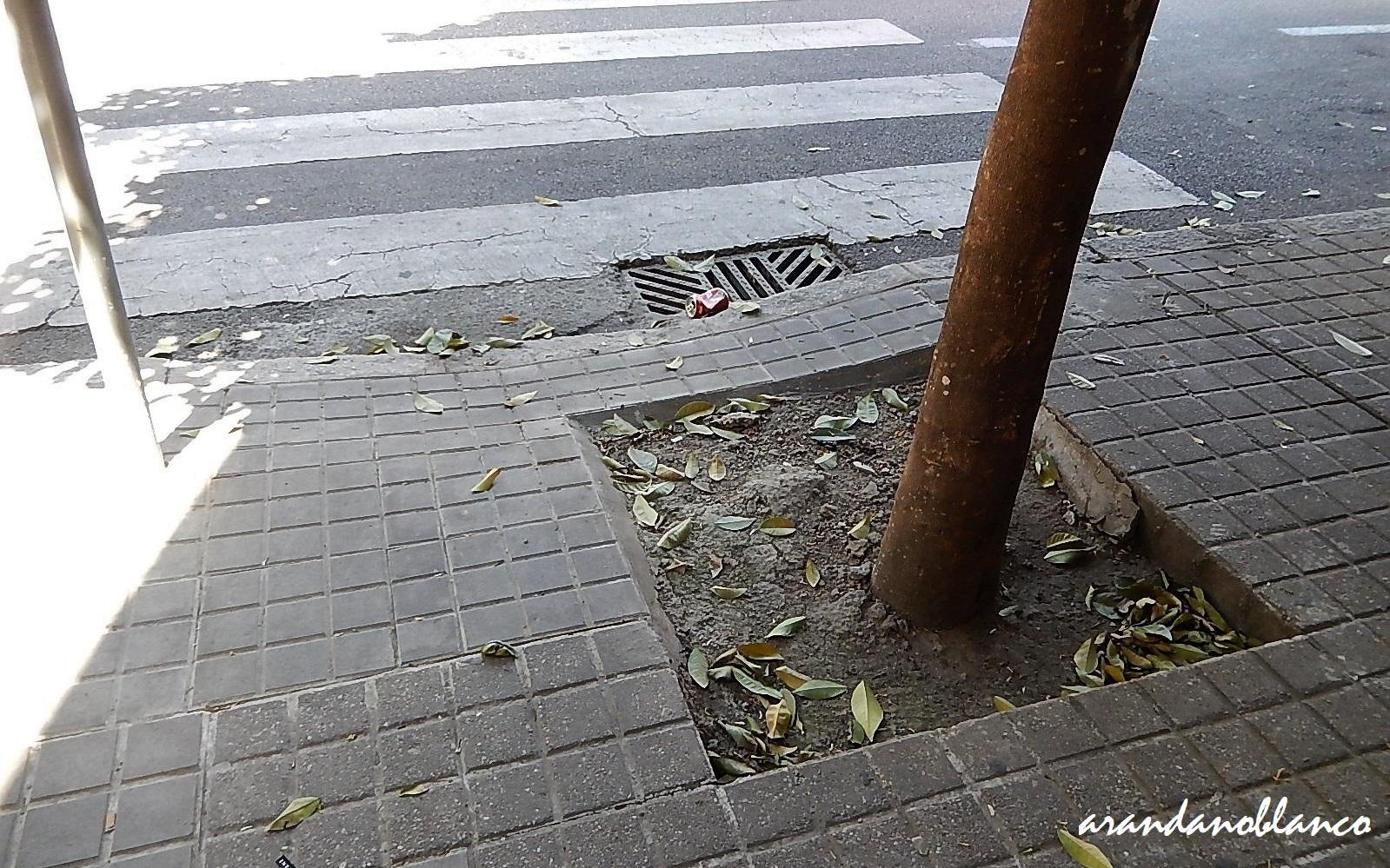 Encinarosa elarbolmiamigo despropositos plaza de rafael - Calle rafael salgado ...