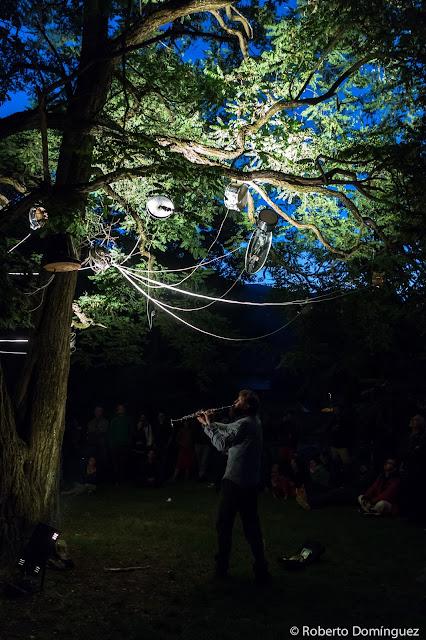 © R.Domínguez -  Electrik Botanik Ensemble