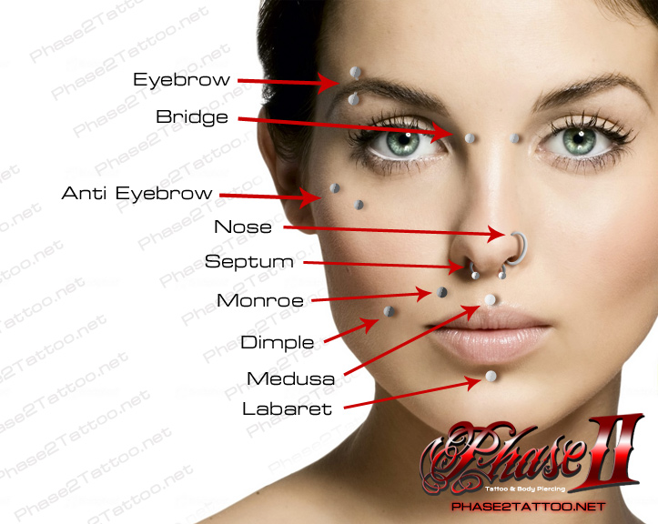 The gallery for --> Face Piercings Chart